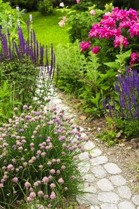 gardening advice, garden path