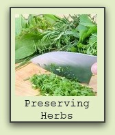 freezing-herbs