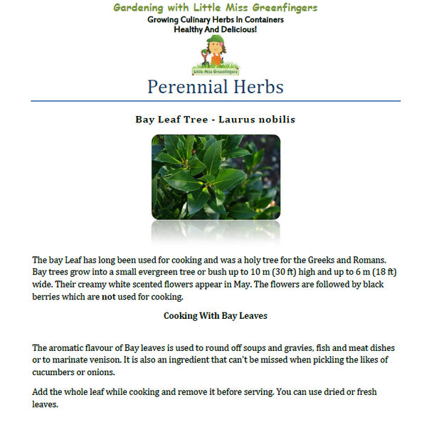 sample ebook growing culinary herbs