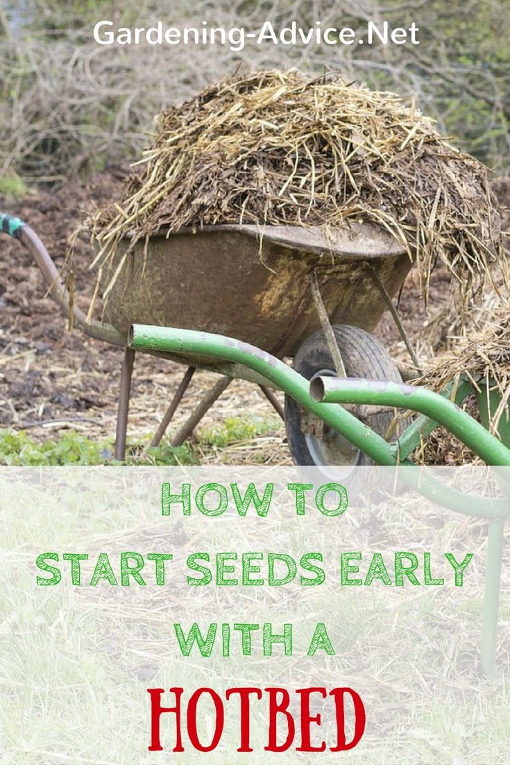 Starting Seeds Early With A Hotbed