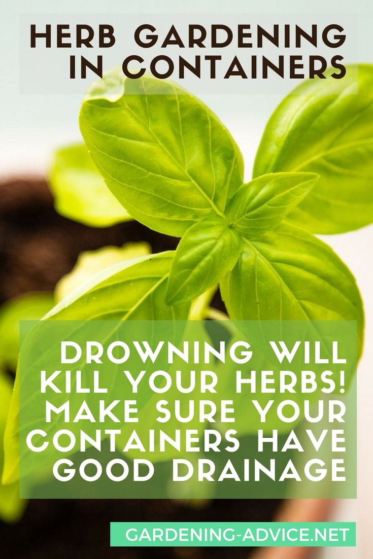Tips & Tricks For Your Container Herb Garden #gardeningtips #gardening #herbgarden #herbs #organicgardening