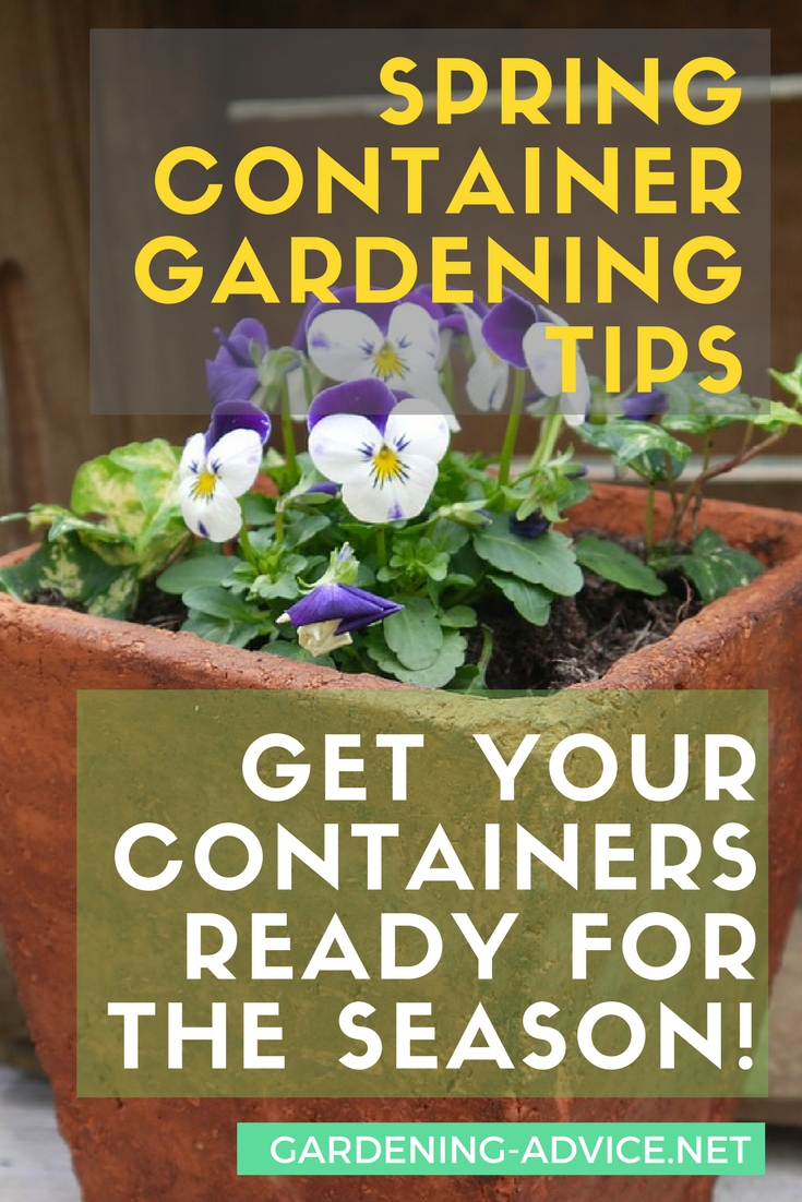 March Gardening Tips to get your container garden ready for spring! #gardeningtips #gardening #organicgardening #urbangardening #permaculture #homesteading #containergardening