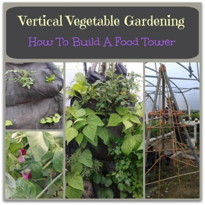 vertical gardening ideas collage