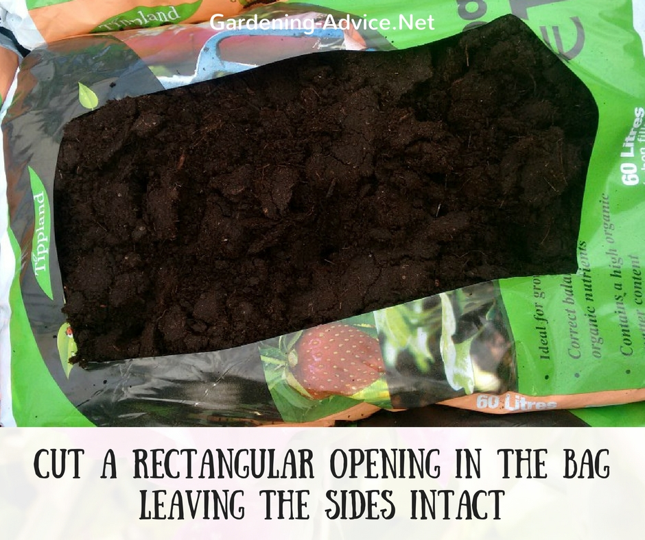prepare the potting soil bag for planting lettuce