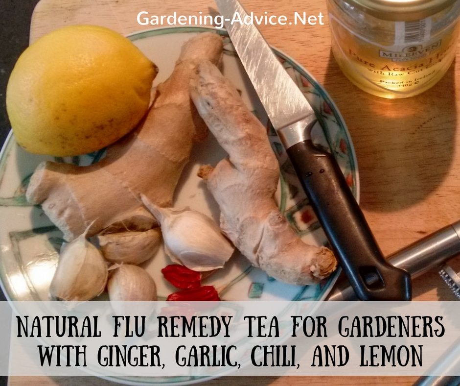 homemade flu remedy ingredients