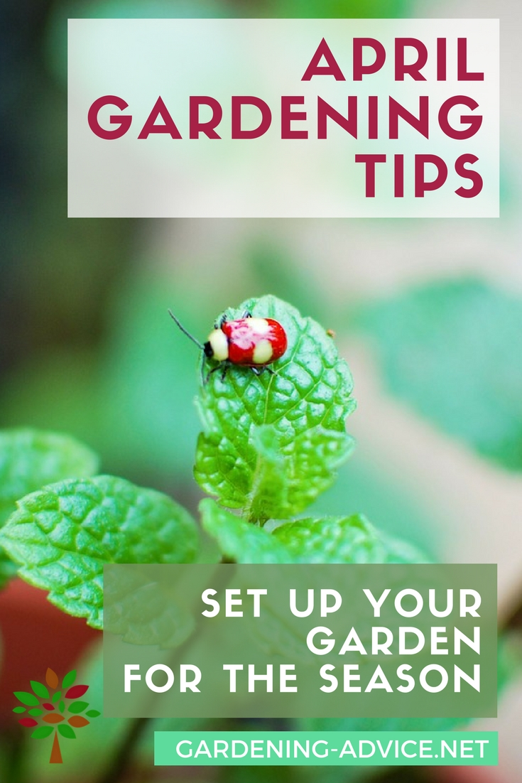 April Gardening Tips #gardeningtips #gardening #organicgardening #vegetablegardening #homesteading #homesteadgarden #urbangardening