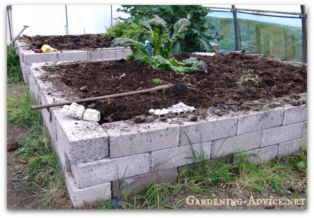 building raised garden beds, concrete block raised bed