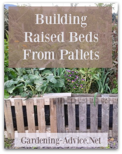 guide to building raised garden beds