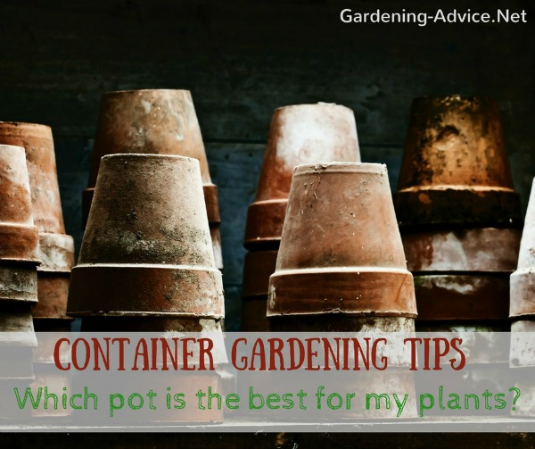 Which is the best pot for my plants?