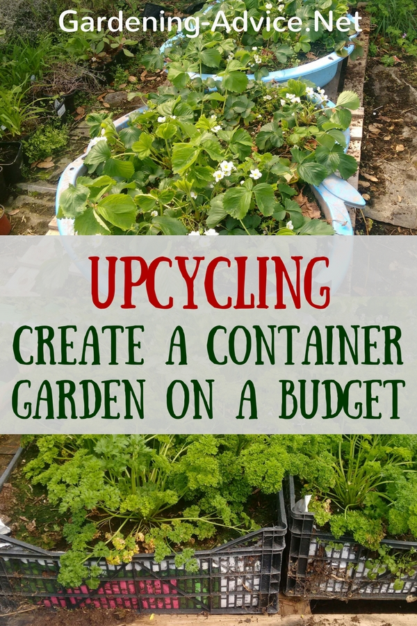Create a vegetable container garden on a budget for Creating a vegetable garden