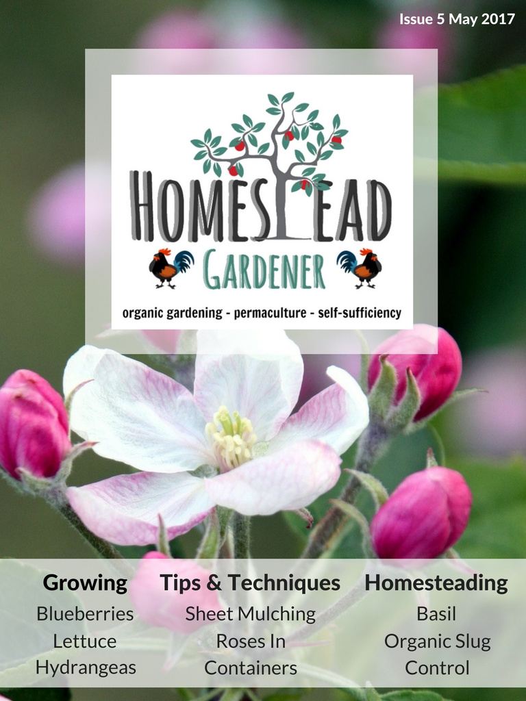 Homestead Gardener Magazine