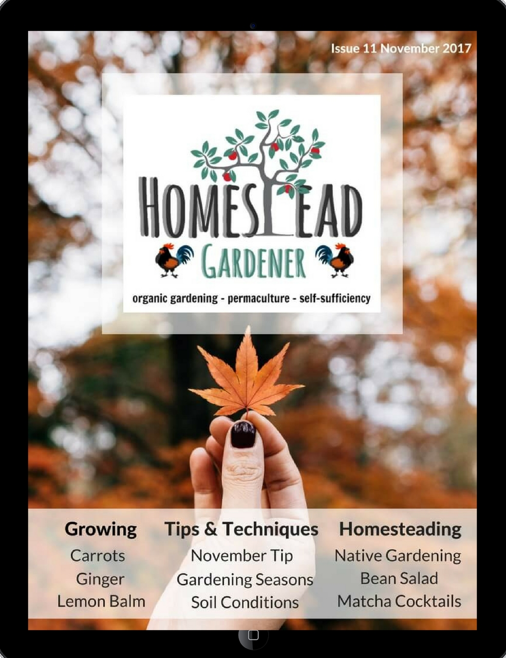 homestead gardener magazine cover Nov 2017