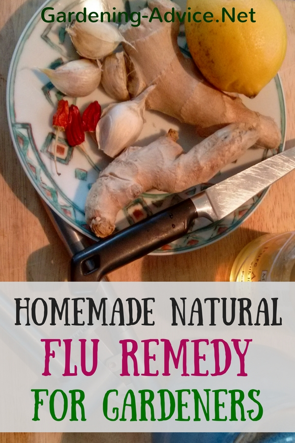 homemade natural flu remedy for gardeners
