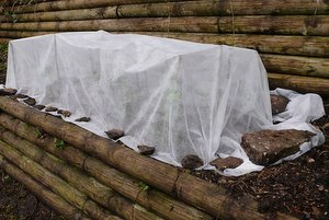 protecting plants from frost with fleece