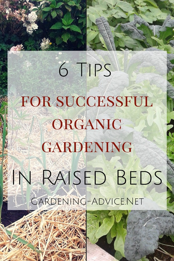 essential raised bed organic gardening tips, Natural flower