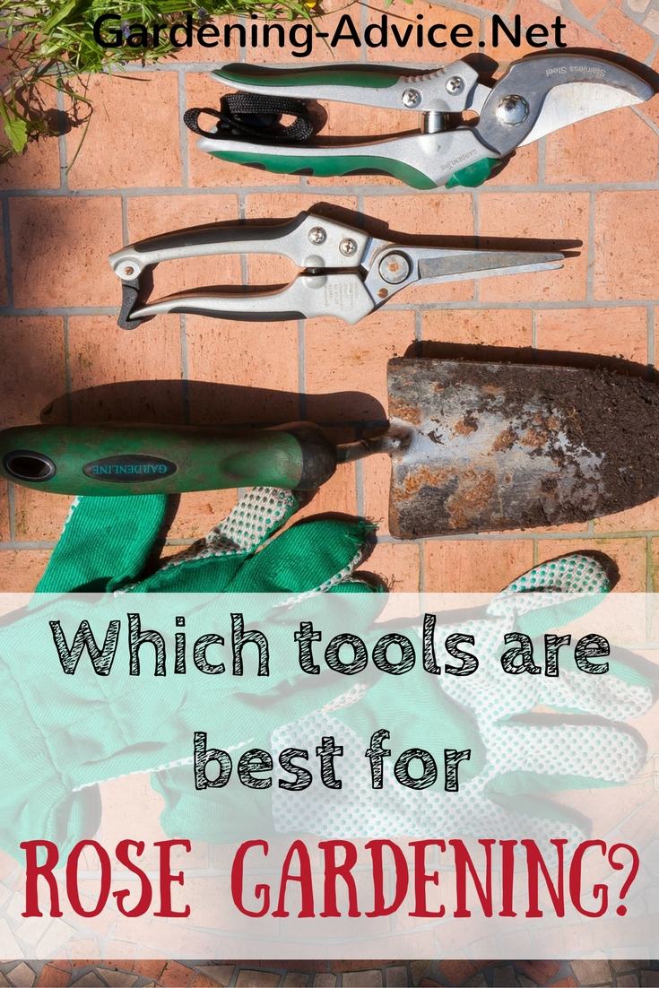 Which rose gardening tools do you really need for Gardening tools you need