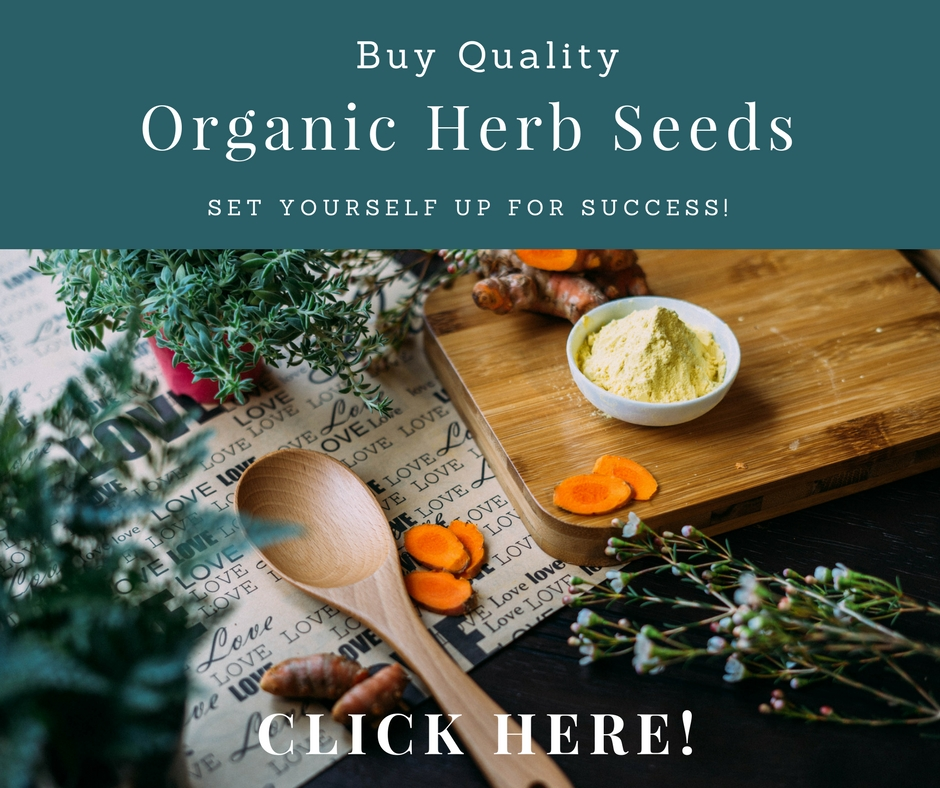 Buy Quality Herb Seeds! #gardeningtips #herbgardening #herbs