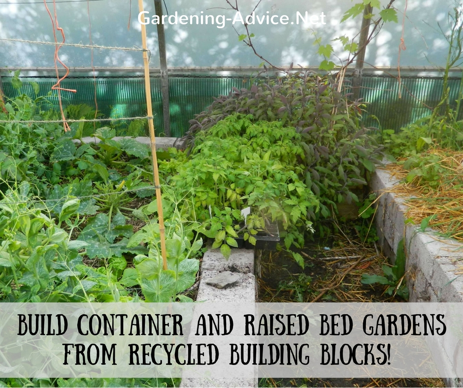 raised garden beds made from building blocks