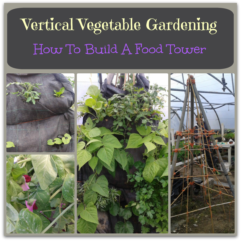 Vertical Gardening Ideas For Growing Vegetables