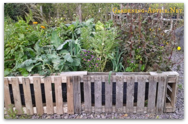 garden bed built from used pallets