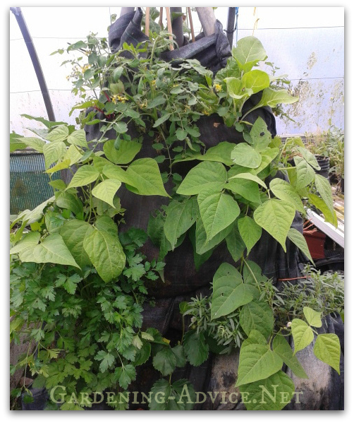 verical gardening ideas-food tower